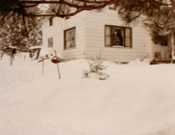 Winter Days, 1985.jpg